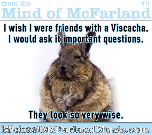 Mind of McFarland #11 - I wish I were friends with a Viscacha. I would ask it important questions. They look so very wise.